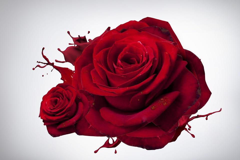 Lust auf Sachsen - Valentinstag feiern im Nichtraucher Hotel Privat