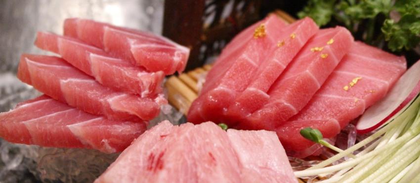 The Tuna Day im SHIKI Sushi Restaurant und Bar Dresden