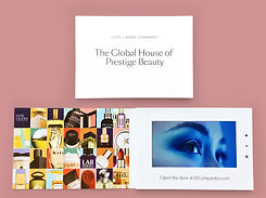 This video press release is another type of video brochure used by Estee Lauder in promoting their new corporate website
