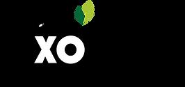 LiXO%20sin%20sombra-02_edited.png