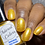 Thumbnail: Golden Nugget