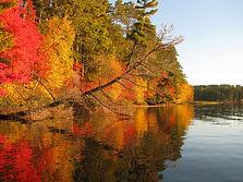 2012 Fall Shoreline.jpeg