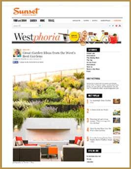 MediaPage-12.jpg
