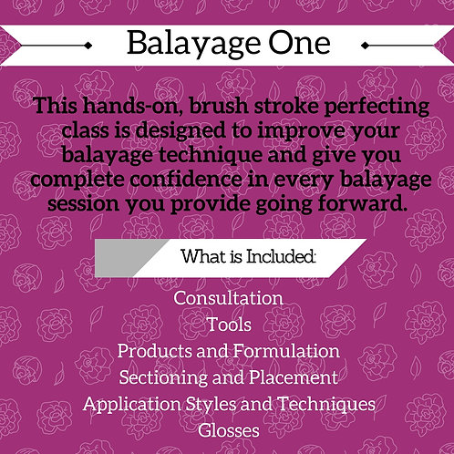 Balayage1 One-on-One  $175 (Deposit Only)