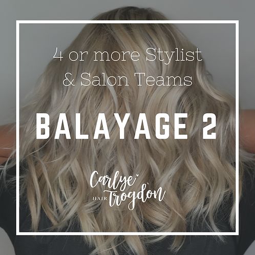 Balayage 2 $175 Per Person (Full Payment)