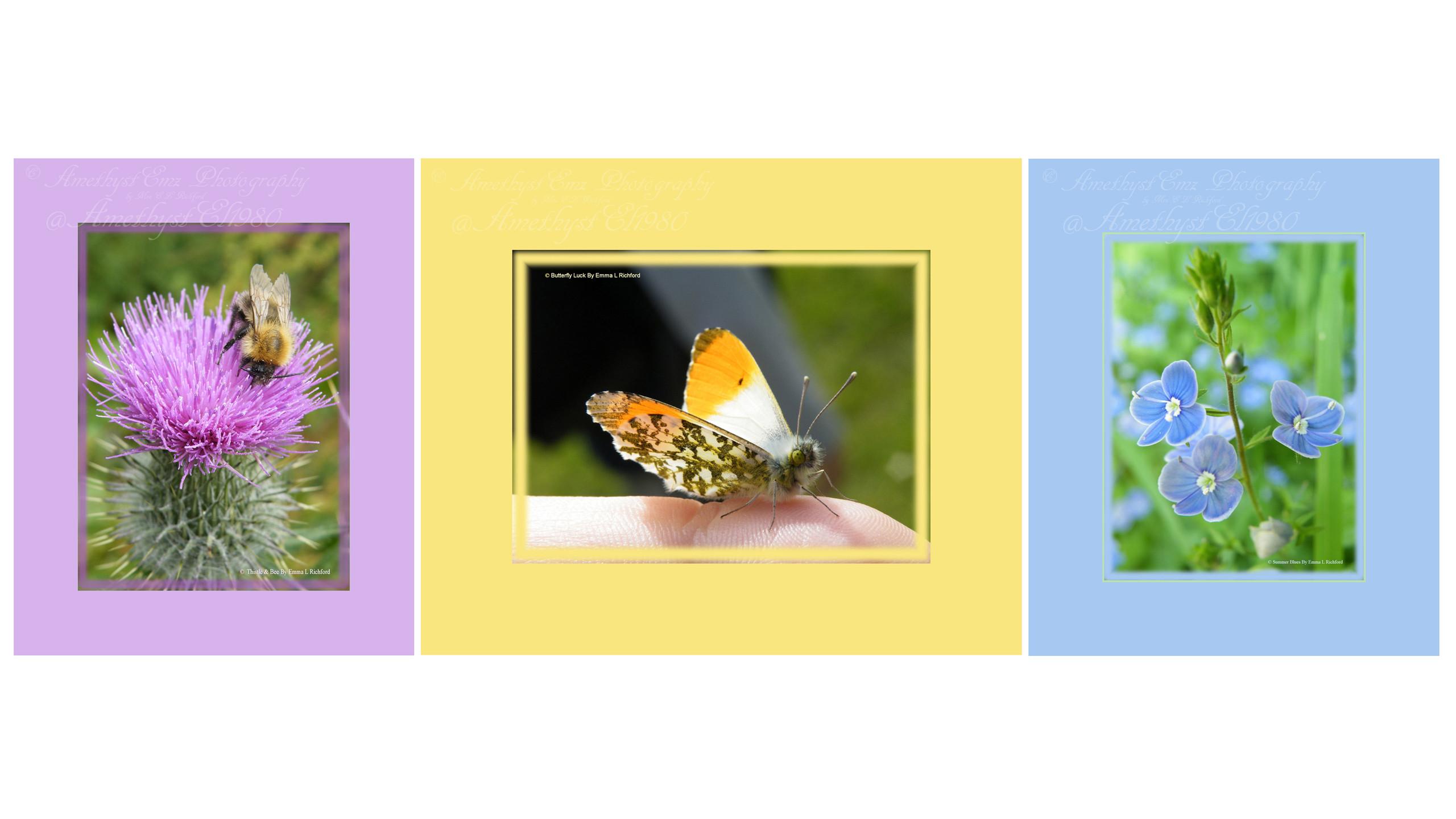 copy right close-u presentation collage.