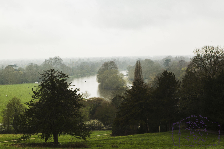 Cognizance-Richmond-the River