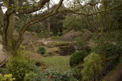Cognizance-Twickenham-Secret Garden