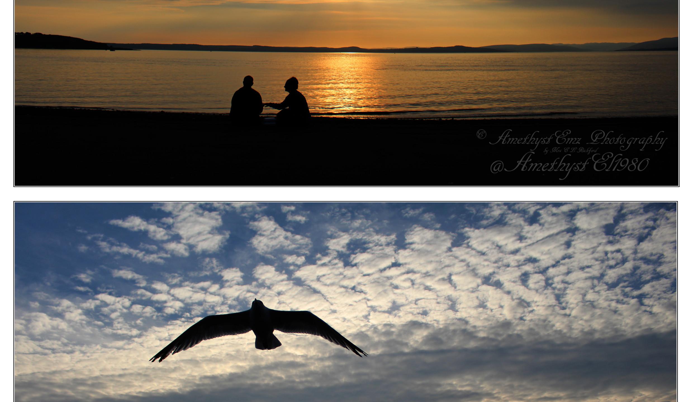 copyright beach landscape collage