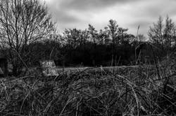 cognizance-moodiesburn_O5A6814