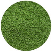 matcha powder - compressed.jpg