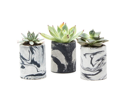 Mini Planter Set