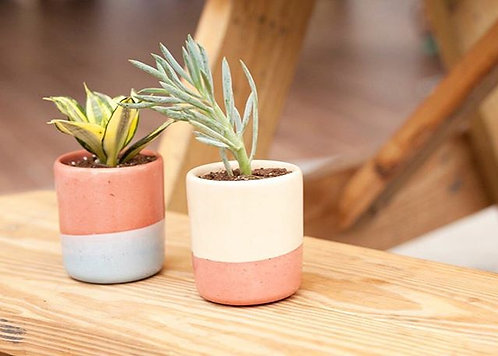 Two Tone Medium Planter