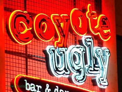 Coyote_Ugly-min.jpg