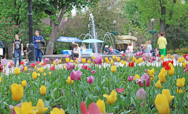 Парк Шевченка в Києві