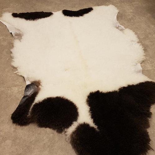 Unika Lammfällar 35mm korthårig Dorperkorsning