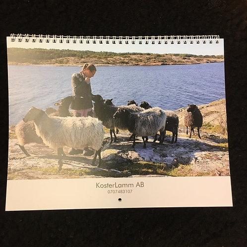 Kalender 2020 på får och lamm från Koster