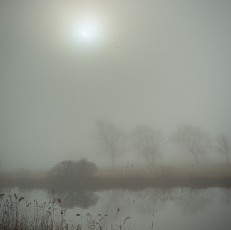 SunInFog.jpg