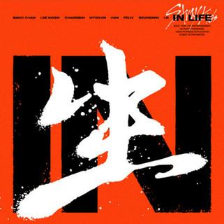 "StrayKids (스트레이키즈) [In 生 (In Life)] ""2X Platinum"""