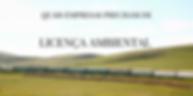 quais empresas precisam da licenca ambiental