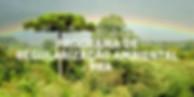 Imagem de area de vegetação para requerer PRA
