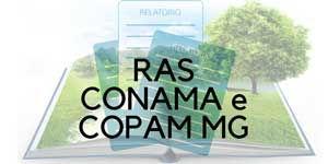 Imagem do RAS CONAMA e COPAM