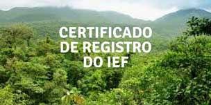 Imagem de flora que precisa de certificado de registro do ief