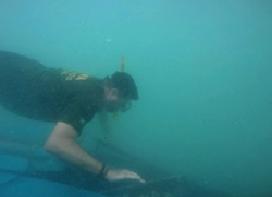 Responsável pelo derramamento de diesel no litoral do Rio Grande do Norte é multado pelo IBAMA