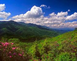 Mount Mitchell Photo