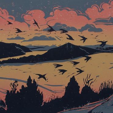 Diane Rose - Starlings Over Llyn Clwedog