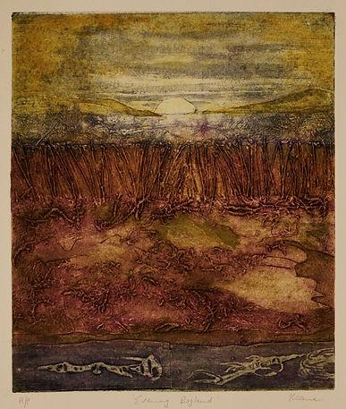evening-bogland-web.jpg