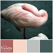 Hidden-Flamingo-Palette.jpg