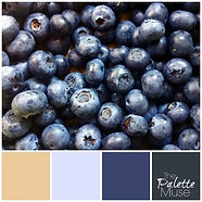 Blueberry-Palette.jpg