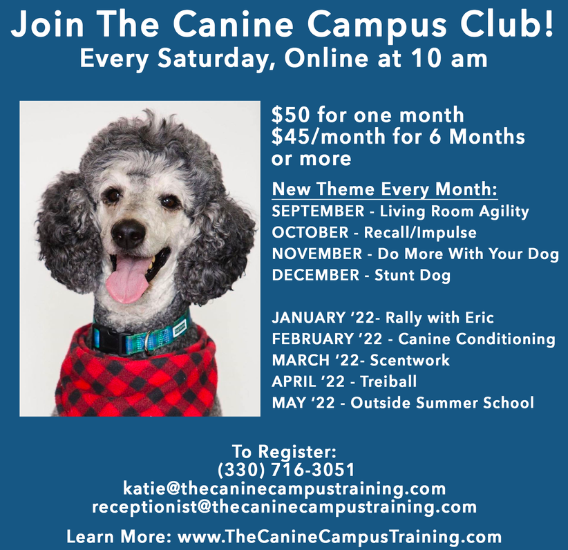Canine Campus Club21-22.png