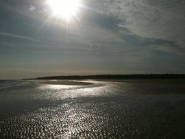 Had an amazing ride on the beach yesterd