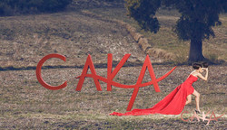 CAKA KOLEKSİYON  (164)