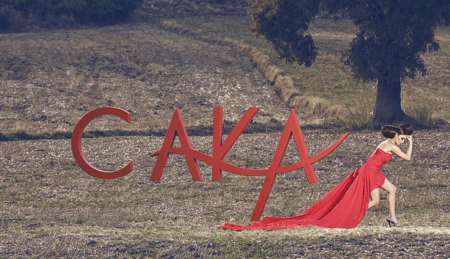 CAKA KOLEKSİYON  (72)