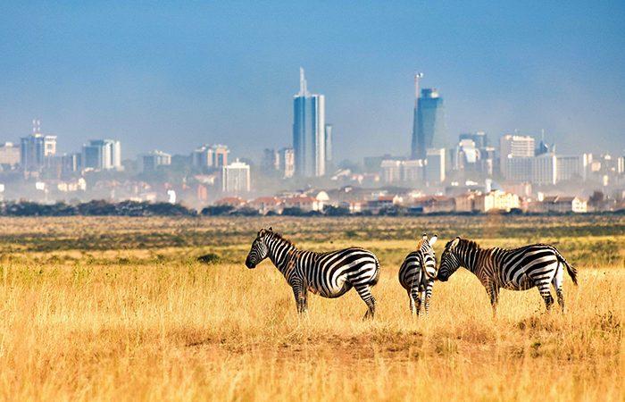 Nairobi-National-Park-700x450