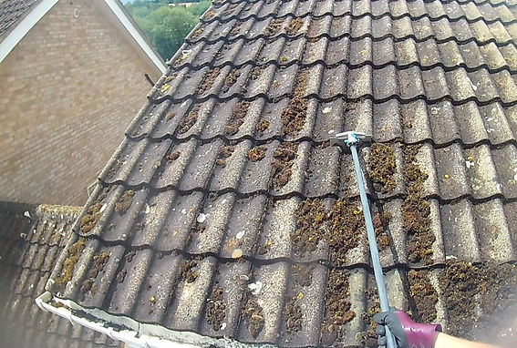 roof-cleaning-Worcestershire_edited.jpg