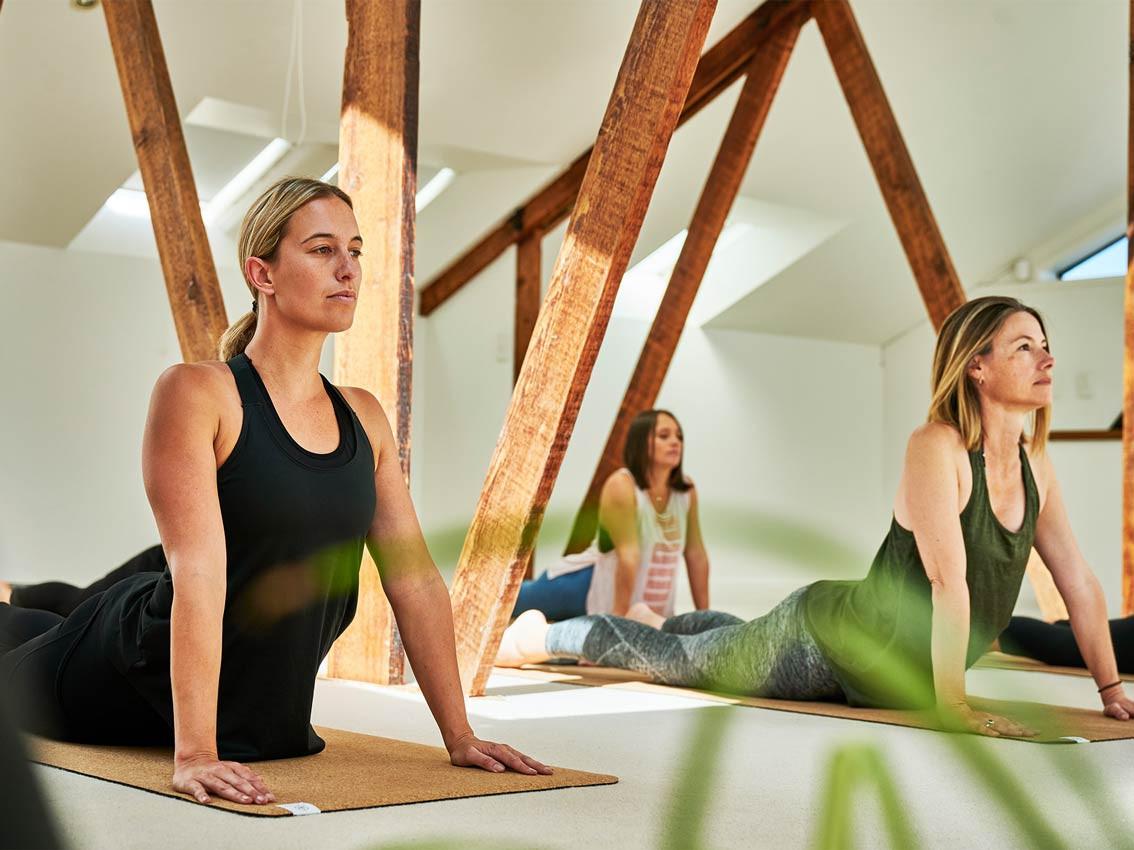 VitalityLab-yoga.jpg