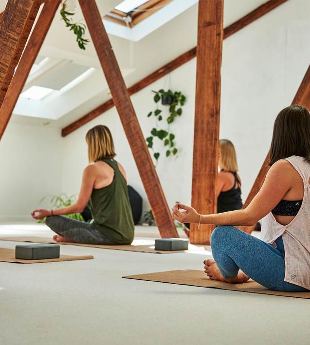 VitalityLab-yogaclass-membership.jpg