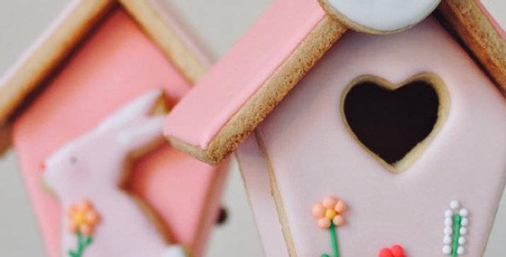 Biscuit Bird House Kit