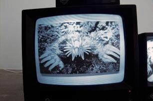 oliverlutz-mediated-06.jpg