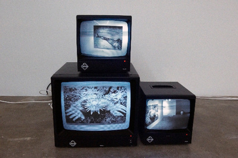 The Mediated Subject (Installation Detail)