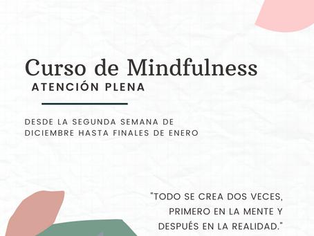 Curso de Mindfulness; Atención Plena.
