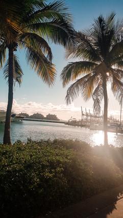 Miami 2019-34.jpg