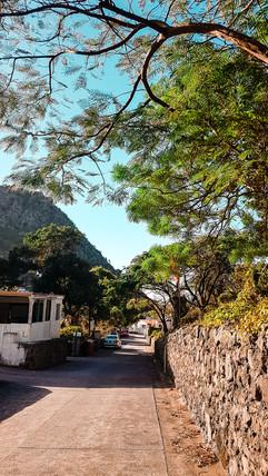 Saba 2019-24.jpg