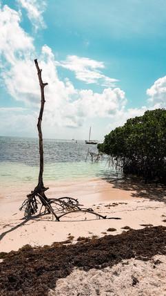 Belize 2019-31.jpg