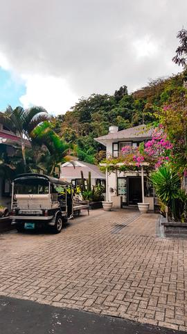 Saba 2019-15.jpg