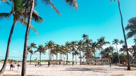 Miami 2019-16.jpg